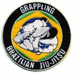 Martial Arts Sample Patch